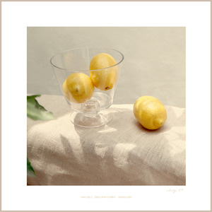 Lemon Scent no.04 : 700*700(mm)